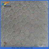 金網の六角形の金網