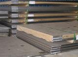 Plaque en acier inoxydable (grâce à la certification SGS)