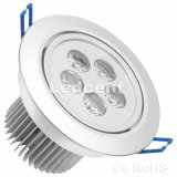 5W DEL Ceiling Light