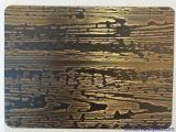 Etch лазера листа нержавеющей стали 304 для панели стены
