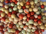 Продукты серии арахис с покрытием (ZY-C)