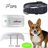 Traqueur neuf GPS d'animal familier avec le positionnement de temps réel (TK909)