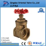 Profesional durable de la calidad de China el mejor forjó agua del latón el 1/2 ''