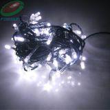 LED 끈 빛 (FCS-G102)
