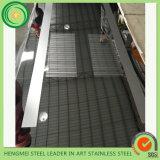 Heißer verkaufenspiegel 304 ätzte Edelstahl-Blatt für Höhenruder-Dekoration