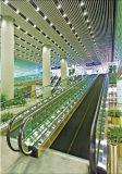 이동하는 보도 전송자 Coneyor Travelator (XNW-005)