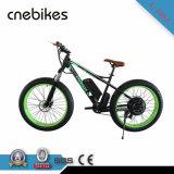 [س] يوافق [750و] محرّك دراجة كهربائيّة [فتبيك] مع مصنع [سلّ-بريس]