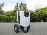 2017 de OpenluchtDriewieler die van de Vrije tijd de Elektrische Autoped van de Mobiliteit vouwen