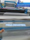 PVC souple (chlorure de polyvinyle) rideaux de bande utilisée dans de plein air