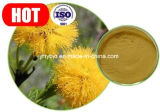 Extracto de Catechu del acacia de la alta calidad, catecol el 40%, hígado de protección