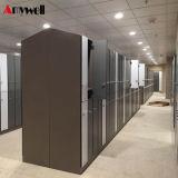 Amywell in de Verkoop van de Kast van de Gymnastiek van de Rijen van China HPL 2 van Fabriek in Shenzhen wordt gemaakt die