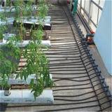Venda a quente 10m de cabo de aquecimento do solo fabricante na China