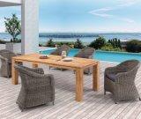 Jardim Pátio em vime exterior de vime Home Hotel Office Restaurante Veneza mesa de jantar e cadeira (J675)