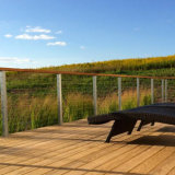 De Balustrade van de Draad van het Roestvrij staal van het terras/de Leuning van het Roestvrij staal van het Traliewerk van de Kabel van het Staal