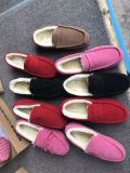 De Schoenen van de voorraad in de Schoenen van de Vrouw van China in de Winter worden gemaakt die