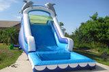 子供のための膨脹可能な防水イルカ水スライド