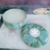 Kaars van de Soja van Natual de Fruit Gebemerkte in de Kruik van het Glas