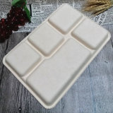 Biodegradable Sugarcane Buffet Tray Compartment Oil Proof Disposable Food Tray
