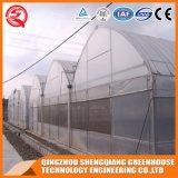 De multifunctionele LandbouwSerres van de Tunnel voor Reses