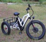 48V 500W vorderer Bewegungselektrisches Dreirad