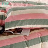 Casa del lenzuolo della camera da letto di promozione dei fornitori della Cina