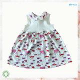 Taille personnalisée petit bébé Vêtements Robe bébé fille