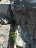Lastra nera assoluta del granito (il nero indiano)