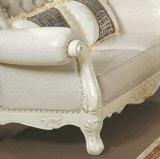 高品質のヨーロッパ様式の家具製造販売業の組合せの革ソファー(159)