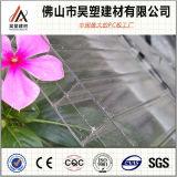 Feuille de Sun personnalisée par feuille en plastique élevée de cavité de polycarbonate de Triple-Mur de Qualtity