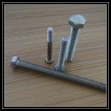 Leite 최신 판매 Gr5 티타늄 놀이쇠 티타늄 나사 잠그개