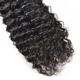 깊은 컬 브라질 머리 직물은 사람의 모발 길쌈 머리 연장을 묶는다