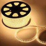 Indicatore luminoso rosso/verde/blu/colore giallo/bianco/caldo di bianco 5050SMD Cina LED di striscia