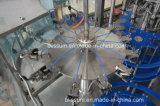 Machine de remplissage pure de l'eau bouteille rotatoire complètement automatique d'animal familier de grande