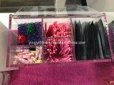 Novo design da caixa Eyelash Acrílico Fabricante Shenzhen