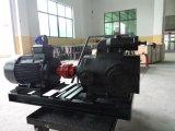 Bitume Pump-Screw Pump-Three Vis pompe Pump-Oil