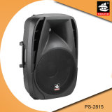 15 Zoll PROpa-Systems-Plastik-DJ-im Freien passiver Lautsprecher PS-2815