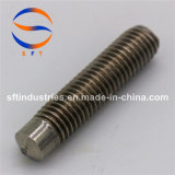Стержень нержавеющей стали продетый нитку M20 (PD) ISO13918