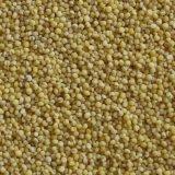 Venda quente do classificador da cor do CCD do arroz Basmati