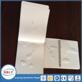 Pierre anti bactérienne Bloc-notes papier