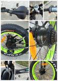 뚱뚱한 타이어에 의하여 숨겨지는 건전지 250W Foldable 전기 자전거 En 15194