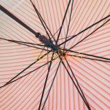 Зонтик конструкции нашивки автоматический открытый прозрачный, зонтик Poe для подарка
