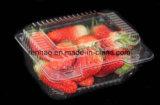 Faltbarer freier/transparenter vollständiger Verpacken- der Lebensmittelplastikkasten