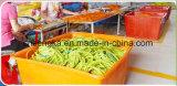 Set von 5 Widerstand-Gefäßen mit gepolsterten Schaumgummi-Griff-Griffen