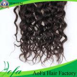 Trama humana del pelo de Remy del pelo rizado brasileño sin procesar del 100% Trama