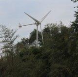 По горизонтали изготовление ветротурбины 96V 120V 220V оси 10kw генератор постоянного магнита AC 3 участков