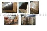 3X8 구멍 중국 공급자와 가진 상업적인 참피나무 합판