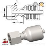 Ajustage de précision d'une seule pièce hydraulique de joint femelle d'Orfs (24211Y, 24211TY)