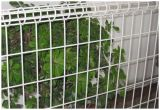 Valla doble bucle ecológica para jardín