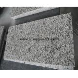 Mattonelle di pavimentazione poco costose del granito della pietra di prezzi con buona qualità