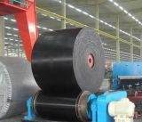 Lámina de goma para la Granja de Caballos de utilización de caucho de Yokohama en Shandong China